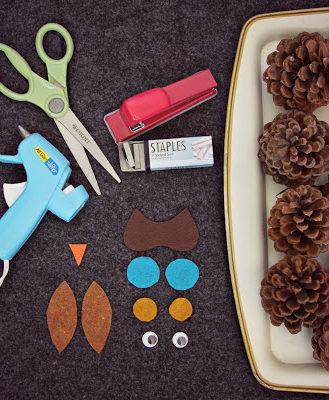 Owl supplies