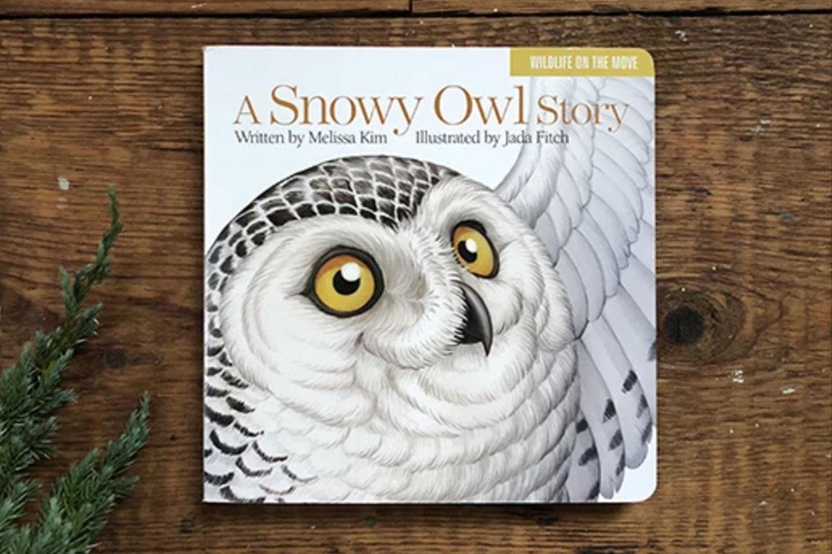 A Snowy Owl Story, book
