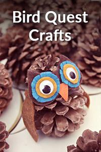Bird Quest Crafts