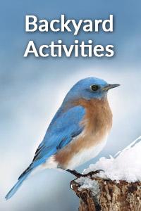 Bird Quest Backyard Activities