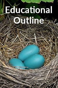 Bird Quest Educational Outline