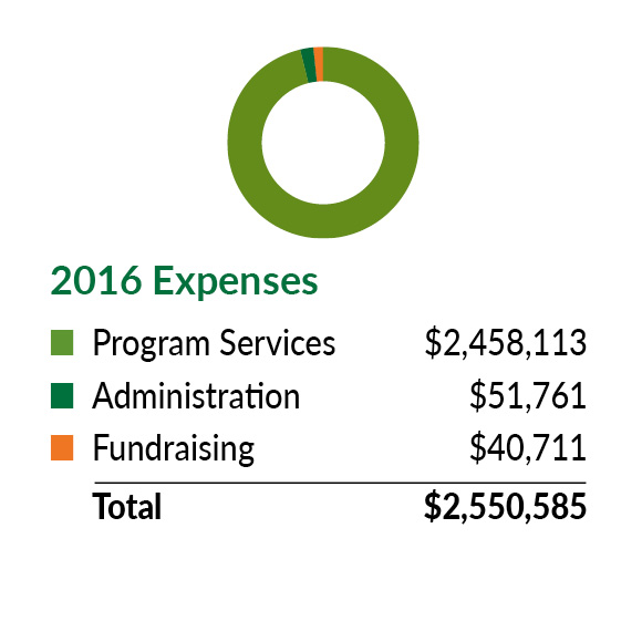 Chart Expenses 2016