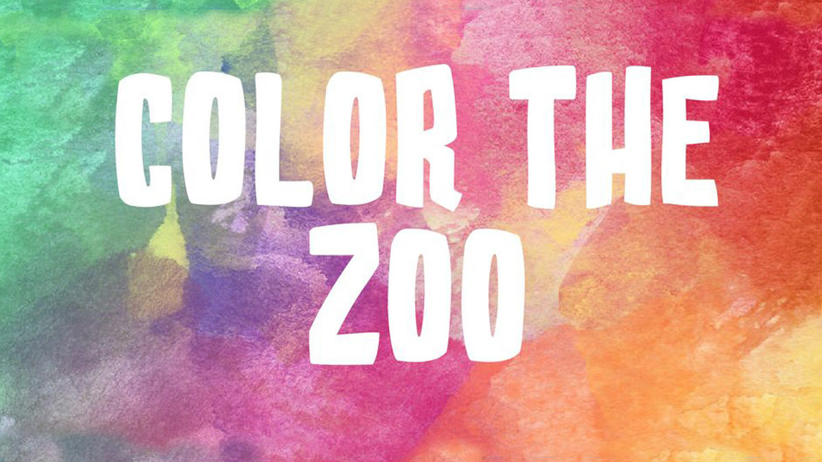 Color the Zoo