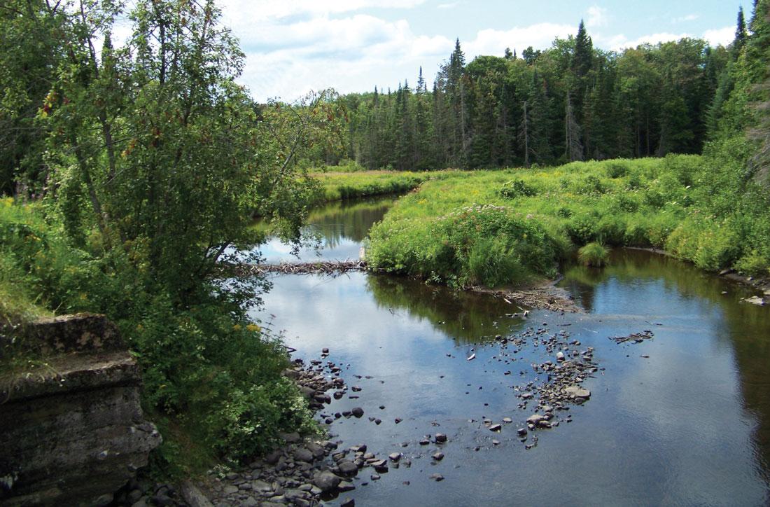 East Branch Fish Creek