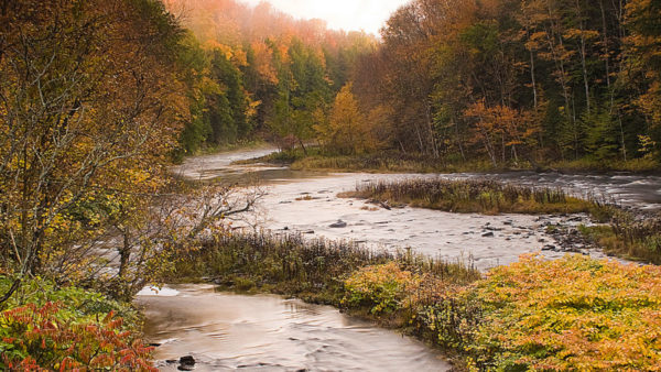 East Branch of Fish Creek by Zachary Wakeman