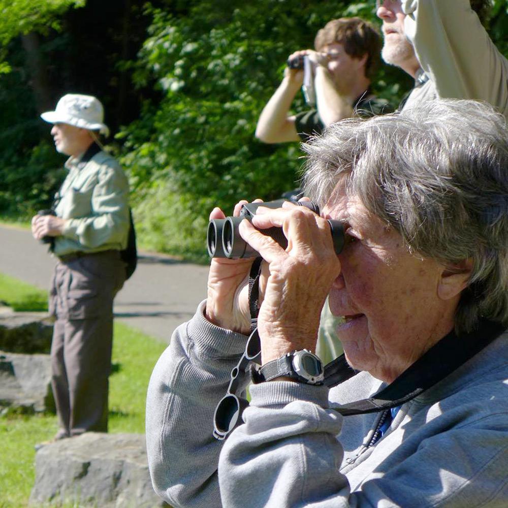 bird watchers by Emmanuel Vaucher
