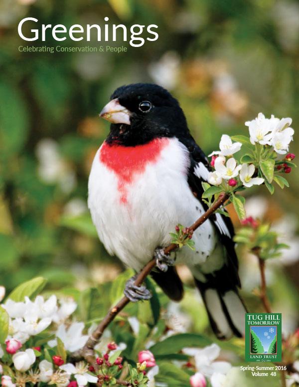 Greenings News Spring 2016