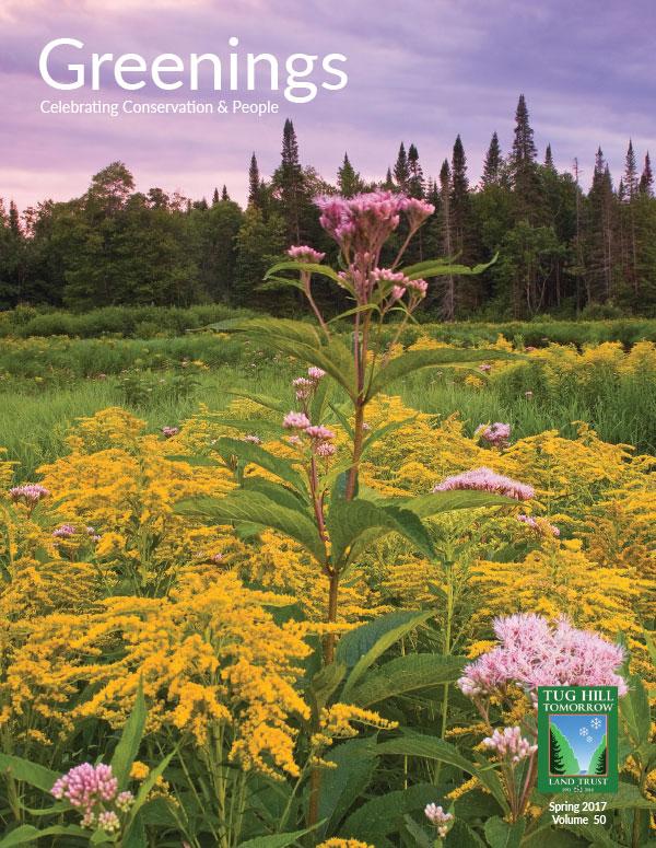 Greenings News Spring 2017