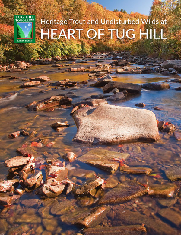 fall view of a Tug Hill region river