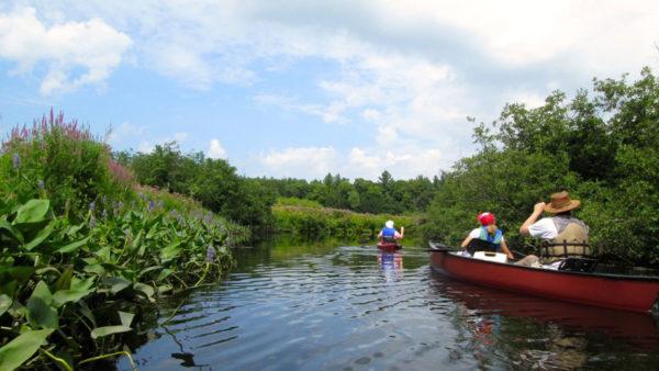 KayakPaddle