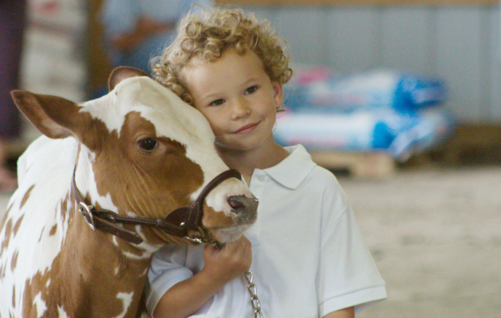 A yong boy with his cow at the Fair in Boonville