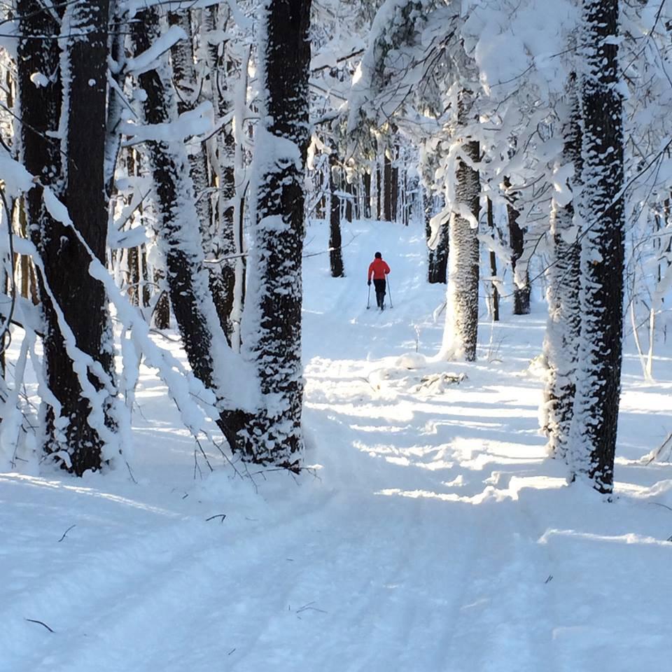 Rodman Barnes Corners XC Ski trails