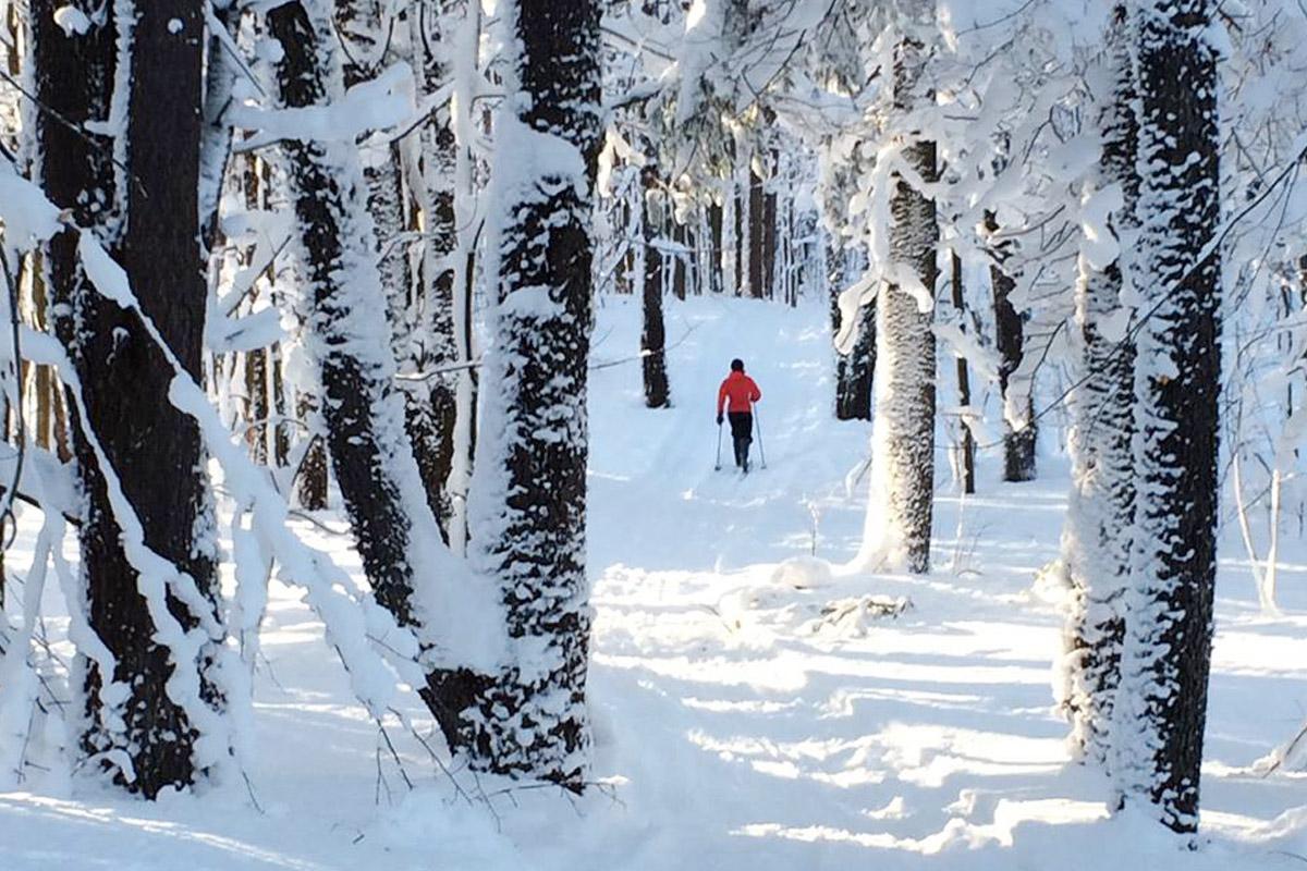 Rodman-Barnes winter event