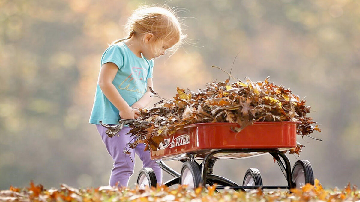 fall leaves fill the wagon